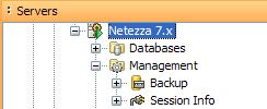 Netezza 7 Support
